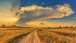 Deliblatska Peščara - Image: Deliblatska peš