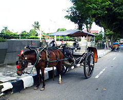 Delman Wikipedia Bahasa Indonesia Ensiklopedia Bebas