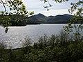 Derwent Water - geograph.org.uk - 1541991.jpg