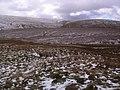 Descending Swarth Fell Pike - geograph.org.uk - 734250.jpg