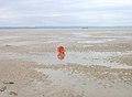 Discarded Basket, Romney Sands - geograph.org.uk - 445393.jpg