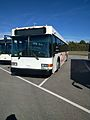 Disney Bus Number 5103-12 (31549963061).jpg
