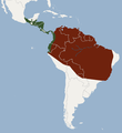 Distribution of Phyllostomus discolor.png