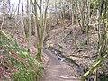 Divoty Glen, Chatelherault Country Park - geograph.org.uk - 134292.jpg