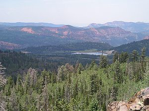 A photo of the view across Dixie National Forest from the Yankee Meadow Overlook