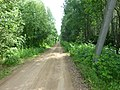 Dobryanskiy r-n, Permskiy kray, Russia - panoramio (242).jpg