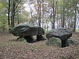 Dolmen in Apeldorn (Lower Saxony) Germany 01.JPG