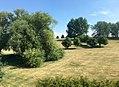 Downham Fields.jpg