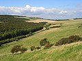 Downland, Friston - geograph.org.uk - 947748.jpg