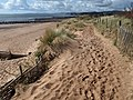 Dune path, Dawlish Warren - geograph.org.uk - 1253601.jpg