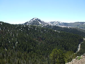Dunraven Peak - Dunraven Peak (center), viewed from the Mount Washburn trail