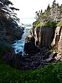 East Coast Trail (44034430941).jpg