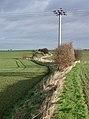 East of Patrington - geograph.org.uk - 323847.jpg