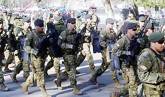 Chilean Marine Corps - Amphibious expeditionary brigade.