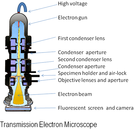 Diagram of a transmission electron microscope Electron Microscope.png