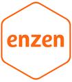 Enzen Logo18.png