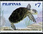 Eretmochelys imbricata 2006 stamp of the Philippines.jpg