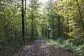 Eschenberg - panoramio (8).jpg