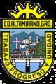 Escudo de Ciudad Altamirano.png