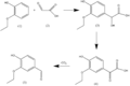 Ethylvanillin synthesis.png
