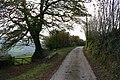 Exton, Stone Lane - geograph.org.uk - 71104.jpg