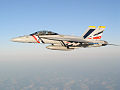 F-18F VFA-2 in flight 2005.jpg