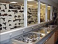 FBI Lab Firearms Reference Collection.jpg