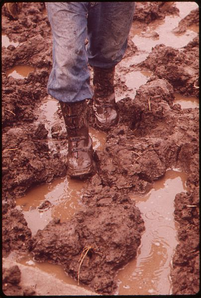 File:FEET OF FARMER JOHN DOLEZAL SLOGGING THROUGH MUD ON DOLEZAL'S FARM NEAR BEE, NEBRASKA. UNUSUALLY HEAVY RAINFALL THIS... - NARA - 547422.jpg