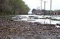 FEMA - 34925 - Flooded street in Illinois.jpg
