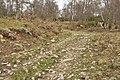 Farm track near Kilnmaichlie - geograph.org.uk - 1806099.jpg
