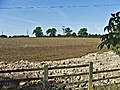 Farmland Chase Farm, Stagg Hill - geograph.org.uk - 54429.jpg