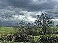 Farmland south of Hadley Road, Enfield - geograph.org.uk - 368927.jpg