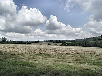 Sonning Common - Hay meadow and woodland on borders with higher parts of the Chilterns.