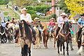 Fiestas Patrias Parade, South Park, Seattle, 2015 - 269 - the horses (20972706774).jpg