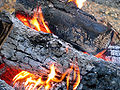 Firewood with flame ash and red embers.jpg