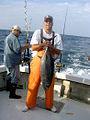 Fisherman with albacore tuna.jpg