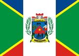 Flag of Periquito MG.png