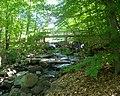 Flat Rock Brook dam jeh.jpg