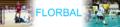 Florball portal - Czech banner.png