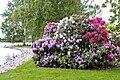 FlowersHadDamPark.jpg