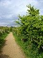 Footpath across Radipole Lake Nature Reserve, Weymouth - geograph.org.uk - 1848429.jpg