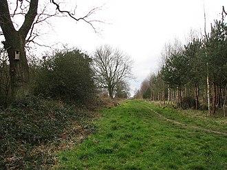 Pigneys Wood - Image: Footpath through Pigney's Wood geograph.org.uk 720296