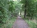 Footpath to East Kilbride Road - geograph.org.uk - 1497237.jpg
