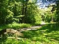 Forst Potsdam (Potsdam Forest) - geo.hlipp.de - 37832.jpg