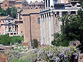 Forum temple of antoninus and curia julia.jpg