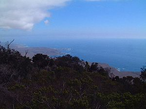 Bosque de Fray Jorge National Park - Outlook over the national park