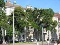Friedrich-Schmidt-Platz 11.JPG