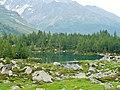From Passo di Verva to Grosio (Lago Acqui Sparsi) - panoramio.jpg