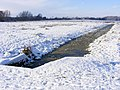 Frozen drainage channel on Outney Common - geograph.org.uk - 2667401.jpg