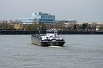 Galiya (ship, 2009) 006.JPG